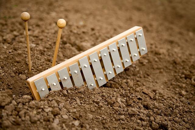 Hudební nástroj xylofon.jpg